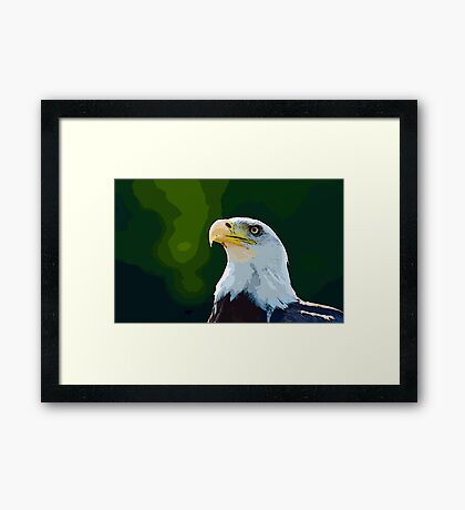 Beautiful Bald Eagle Framed Print