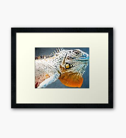 Amazing Iguana1 art2 Framed Print