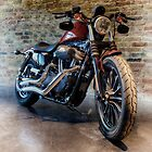 A CUSTOM RIDE by Rob  Toombs