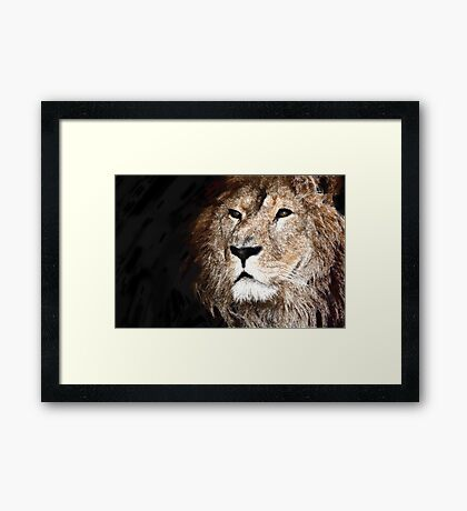 Victorious Lion Framed Print
