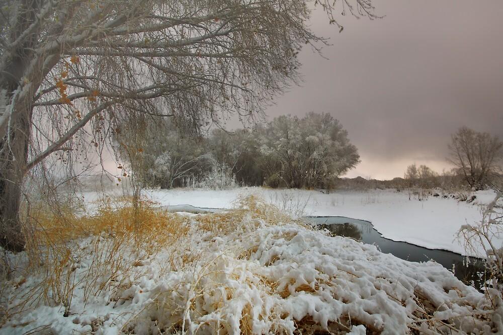 Winter Scene 1 by Bob Larson