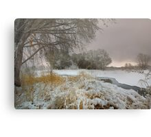 Winter Scene 1 Metal Print