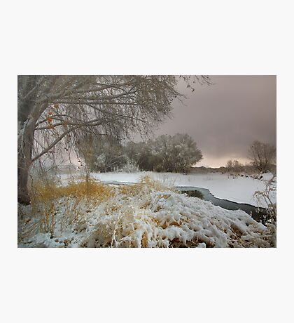 Winter Scene 1 Photographic Print