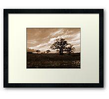 Winter on the Farm Framed Print
