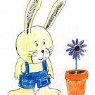 Rabbit by jay martin