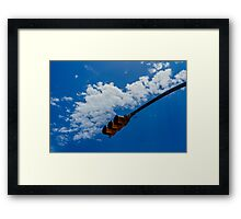 Paint the sky with your imagination Framed Print