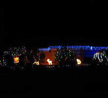 Christmas Lights at a house in Mount Pleasant, S.A. by Rita Blom