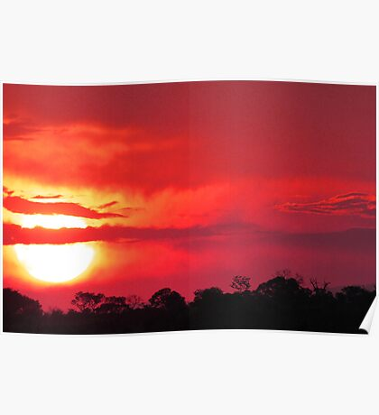Another exceptional african sunset Poster