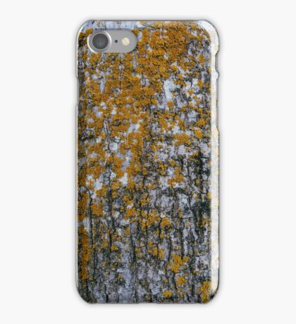 Yellow Lichen on the Tree iPhone Case/Skin