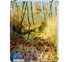 Low Water Creek i-Pad Case iPad Case/Skin