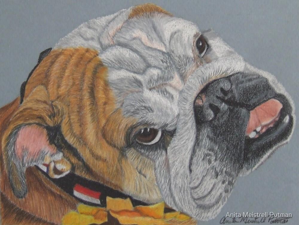 Princess - English Bulldog Commission by Anita Meistrell Putman