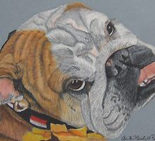 Princess - English Bulldog Commission by Anita Meistrell Putman