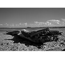 The Abandoned Log Photographic Print