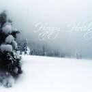 Happy Holidays by Annie Lemay  Photography