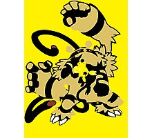 【16300+ views】Pokemon  Elekid>Electabuzz>Electivire Photographic Print