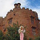 Powis Castle by VeronicaPurple