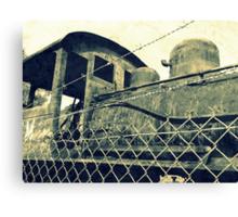 Iron Horse Behind the Fence Canvas Print