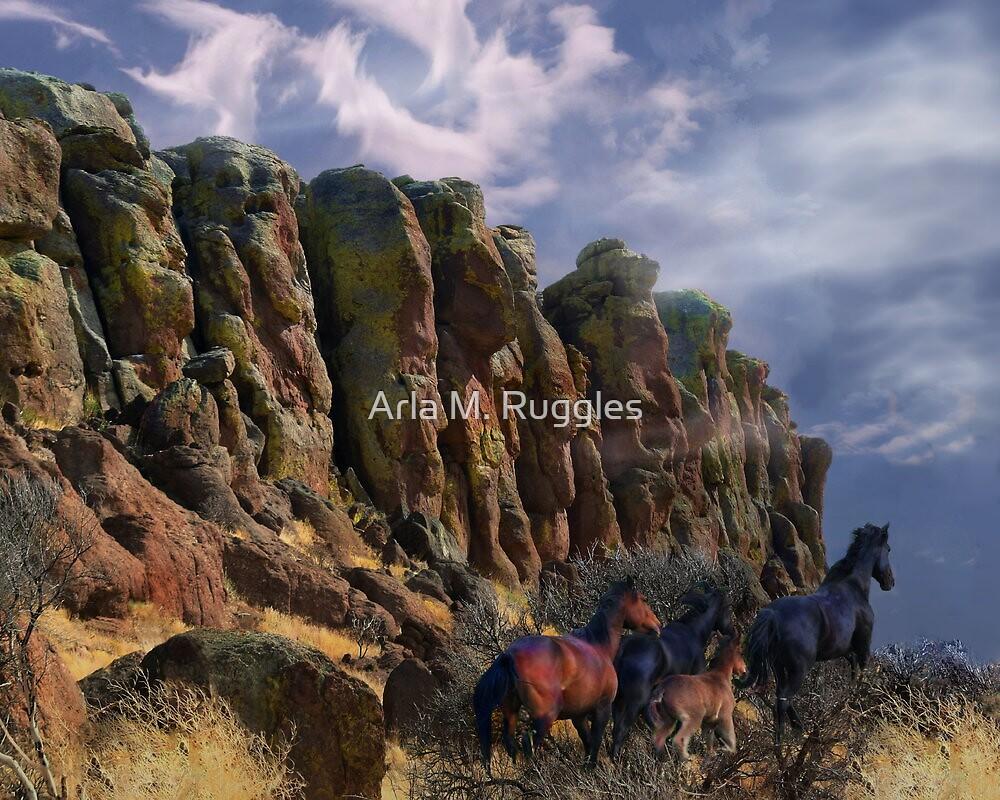 Paladin Breaks by Arla M. Ruggles