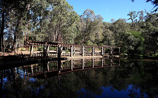 Roleystone,Araluen Botanic Garden's Lake by Tony Brown