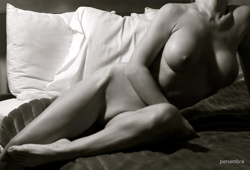 Curves.  by penambra
