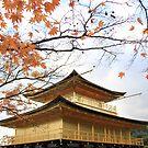 Japan - Autumn 4 by Glenn Browning