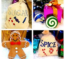 Sugar and spice and all things nice... by ©The Creative  Minds