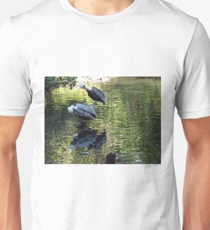 Exotic Bird and Reflection, Bronx Zoo, Bronx New York T-Shirt