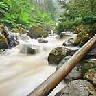 Keppel Creek by S T