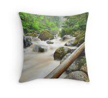Keppel Creek Throw Pillow