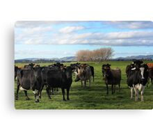 The Welcoming Cowmittee Canvas Print