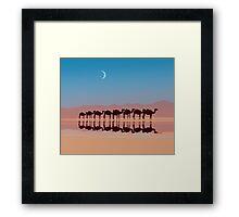 Group of camels walking in sahara Framed Print
