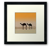 Dromedary camels and a mirage Framed Print