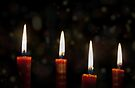 Magical Christmas Candles by Denise Abé