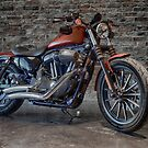A CUSTOM RIDE 2 by Rob  Toombs