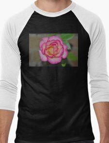 This years bloom from Mum's rose Men's Baseball ¾ T-Shirt