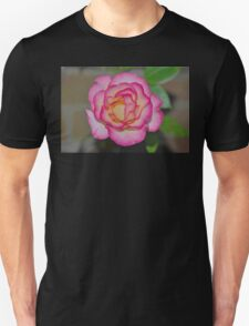 This years bloom from Mum's rose T-Shirt