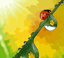 Beautiful ladybug by Adam Asar