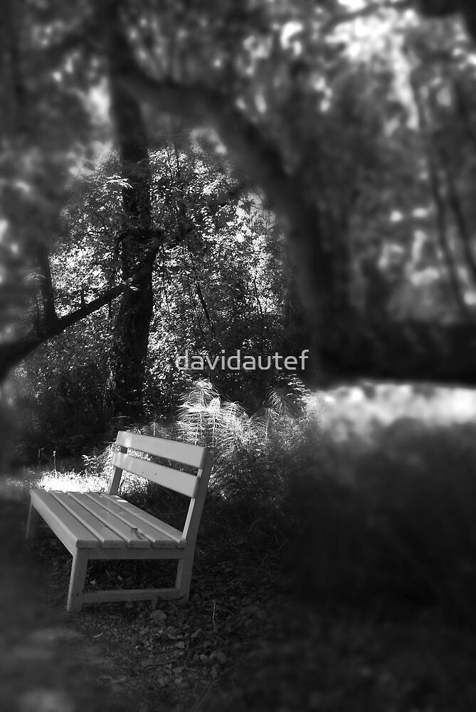 Untitled by davidautef