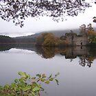 Loch an Eilein nr. Aviemore, Scotland #2 by acespace