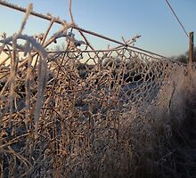 Snow Fence by sweetairhead