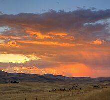 Carrizo Storm Sunset by Cathy L. Gregg