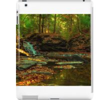 Fall in the woods iPad Case/Skin