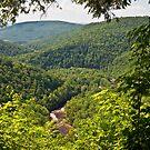 Canyon Vista by Marty Straub