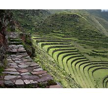 Path to an Andean  Wonder Photographic Print