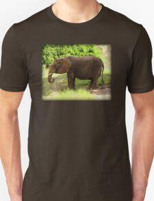 Elephant Eating Grass T-Shirt