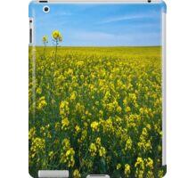 Oklahoma # 2 iPad Case iPad Case/Skin