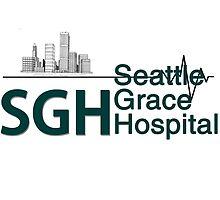 Seattle Grace Hospital Greys {FULL} by fandomss