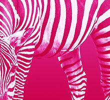 Pink Zebra: Patterns in Nature by Rustyoldtown