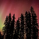Red Auroras by peaceofthenorth
