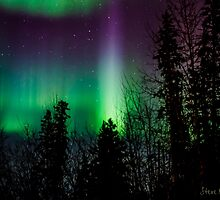 2015 Auroras by peaceofthenorth